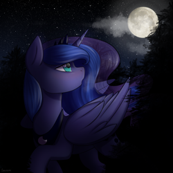 Size: 2200x2200 | Tagged: safe, artist:chickenbrony, princess luna, alicorn, pony, crying, female, forest, looking back, looking up, mare, moon, raised hoof, solo, starry night, stars, tree