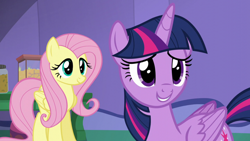 Size: 1920x1080   Tagged: safe, screencap, fluttershy, twilight sparkle, alicorn, pegasus, pony, the one where pinkie pie knows, cute, duo, female, mare, shyabetes, smiling, twilight sparkle (alicorn)