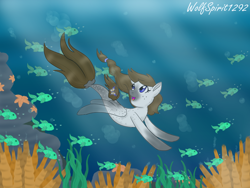Size: 1440x1080 | Tagged: safe, artist:wolfspirit1292, oc, fish, pegasus, pony, seapony (g4), starfish, blue eyes, bubble, coral, crepuscular rays, dorsal fin, fin wings, fish tail, flowing mane, flowing tail, looking up, ocean, open mouth, seaponified, seaweed, smiling, solo, species swap, sunlight, swimming, underwater, water, wings