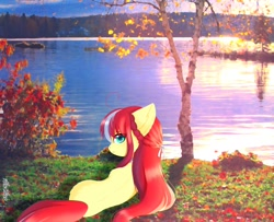 Size: 1846x1499 | Tagged: safe, artist:aleuoliver, oc, oc only, earth pony, pony, earth pony oc, female, lake, looking back, lying down, mare, outdoors, prone, solo, tree