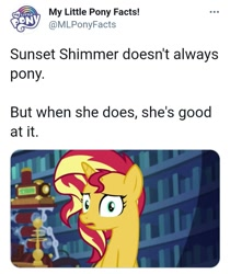 Size: 713x850 | Tagged: safe, sunset shimmer, equestria girls, equestria girls series, forgotten friendship, meta, my little pony facts, twitter