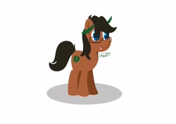 Size: 4096x2896 | Tagged: safe, artist:shooting star, oc, oc:laurel crown, earth pony, pony, lineless, lineless art, male, minimalist, modern art, shading, solo, stallion