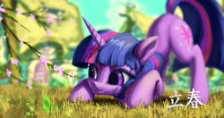 Size: 4096x2160 | Tagged: safe, artist:tinybenz, part of a set, twilight sparkle, pony, unicorn, behaving like a cat, behaving like a dog, cherry blossoms, chinese, crouching, face down ass up, female, flower, flower blossom, high res, looking at something, mare, ponyville, solar term, solo, spring, unicorn twilight