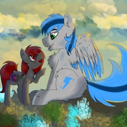 Size: 1640x1640   Tagged: safe, artist:dicemarensfw, oc, oc:blue streak, oc:dicemare, pegasus, pony, cloud, crystal, cute, digital art, dirt, female, grass, happy, light, lighting, male, mare, photo, request, shading, smiling, wholesome