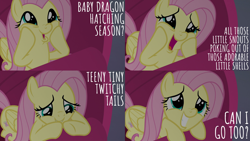 Size: 1986x1117 | Tagged: safe, edit, edited screencap, editor:quoterific, screencap, fluttershy, pegasus, pony, season 9, sweet and smoky, couch, cute, daaaaaaaaaaaw, dash face, gritted teeth, hooves on cheeks, open mouth, puppy dog eyes, shyabetes, solo, teeth