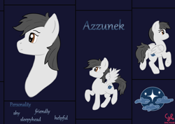 Size: 2480x1754 | Tagged: safe, artist:dumbprincess, oc, oc:azzunek, pegasus, pony, bust, cutie mark, dark background, front view, full body, multiple views, rear view, reference sheet, side view, text