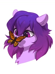 Size: 823x1101 | Tagged: safe, artist:vistamage, oc, oc only, oc:share dast, butterfly, pony, bust, butterfly on nose, chest fluff, insect on nose, simple background, solo, white background