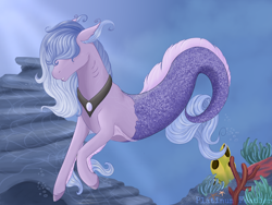 Size: 1600x1200 | Tagged: safe, artist:platinumfeather2002, oc, oc only, merpony, starfish, bubble, coral, crepuscular rays, deviantart watermark, fins, fish tail, flowing mane, flowing tail, jewelry, necklace, obtrusive watermark, ocean, rock, seaweed, solo, swimming, tail, underwater, water, watermark