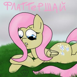Size: 1024x1024   Tagged: safe, artist:a-jaller, fluttershy, pegasus, pony, cyrillic, female, grass, looking down, lying down, prone, russian, sad, solo, teeth