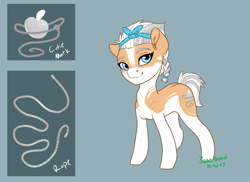 Size: 1100x800 | Tagged: safe, artist:joan-grace, oc, oc only, oc:frosty rose, earth pony, pony, coat markings, female, hairband, mare, offspring, parent:applejack, parent:double diamond, parents:applediamond, reference sheet, solo
