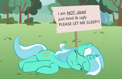 Size: 6435x4180 | Tagged: safe, anonymous artist, lyra heartstrings, drawthread, eyes closed, l.u.l.s., ponified animal photo, sign, sleeping