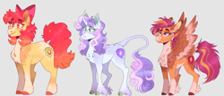Size: 2700x1156 | Tagged: safe, artist:wanderingpegasus, apple bloom, scootaloo, sweetie belle, classical unicorn, earth pony, pegasus, pony, unicorn, alternate hairstyle, apple bloom's bow, blaze (coat marking), blushing, bow, chest fluff, cloven hooves, coat markings, cutie mark crusaders, ear fluff, facial markings, female, freckles, gray background, grin, hair bow, leonine tail, mare, markings, older, older apple bloom, older cmc, older scootaloo, older sweetie belle, pale belly, redesign, simple background, smiling, snip (coat marking), socks (coat markings), trio, unshorn fetlocks