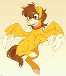 Size: 950x1100   Tagged: safe, artist:higgly-chan, oc, oc only, pegasus, pony, choker, coat markings, facial markings, glasses, markings, snip (coat marking), solo, two toned wings, wings