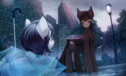 Size: 3500x2100 | Tagged: safe, artist:inowiseei, oc, oc only, oc:kadai, oc:rainfall bloom, bat pony, earth pony, pony, bat pony oc, building, chest fluff, city, clothes, commission, cutie mark, detailed background, duo, female, high res, hoodie, lamppost, male, park, pun, rain, scenery, tree, umbrella, visual pun