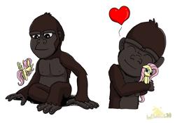 Size: 2927x2048 | Tagged: safe, artist:lordshrekzilla20, fluttershy, ape, kaiju, baby kong, cute, daaaaaaaaaaaw, heart, king kong