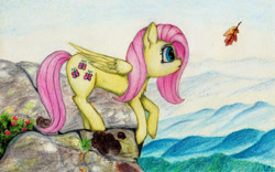 Size: 1280x800 | Tagged: safe, artist:myzanil, fluttershy, pegasus, cliff, colored pencil drawing, curious, flower, grass, leaf, leaning forward, looking forward, mist, mountain, outdoors, scenery, sky, solo, standing, traditional art
