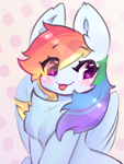 Size: 1000x1324 | Tagged: safe, artist:haokan, rainbow dash, pegasus, pony, :p, blushing, chest fluff, cute, dashabetes, ear fluff, simple background, sketch, smug, solo, tongue out