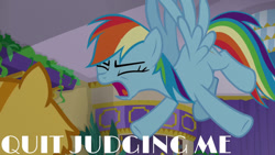 Size: 1280x720 | Tagged: safe, edit, edited screencap, editor:quoterific, screencap, rainbow dash, cat, pegasus, pony, grannies gone wild, eyes closed, female, mare, open mouth, solo, wings