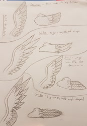 Size: 2629x3806 | Tagged: safe, artist:agdapl, lineart, traditional art, wings