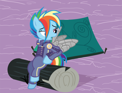 Size: 2590x1980 | Tagged: safe, anonymous artist, derpibooru exclusive, rainbow dash, pegasus, pony, .svg available, alternate timeline, amputee, apocalypse dash, artificial wings, augmented, clothes, crystal war timeline, eye scar, eyelashes, female, grooming, log, looking back, mare, open mouth, outdoors, preening, prosthetic limb, prosthetic wing, prosthetics, scar, sitting, solo, svg, tent, vector, wings