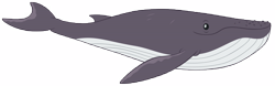 Size: 16148x5064 | Tagged: safe, artist:andoanimalia, humpback whale, whale, growing up is hard to do, simple background, transparent background, vector