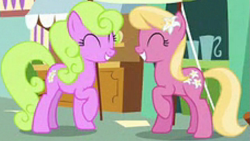 Size: 681x385 | Tagged: safe, screencap, daisy, flower wishes, lily, lily valley, earth pony, pony, she talks to angel, background pony, cropped, duo, female, mare