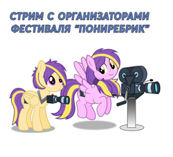 Size: 1324x1200   Tagged: safe, artist:gitzomailru, oc, oc only, oc:palace, oc:trinity, pegasus, pony, camera, cyrillic, ponirebrik, russian, simple background, translation request