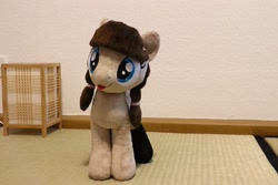 Size: 2048x1365 | Tagged: safe, oc, oc:connie bloom, irl, photo, plushie