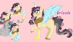 Size: 938x540   Tagged: safe, artist:cocolove2176, oc, oc only, draconequus, hybrid, pegasus, pony, bust, draconequus oc, female, interspecies offspring, male, oc x oc, offspring, parent:discord, parent:fluttershy, parents:discoshy, pegasus oc, pink background, reference sheet, shipping, simple background