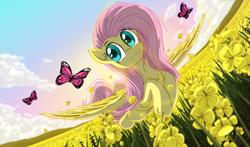 Size: 5600x3300   Tagged: safe, artist:template93, fluttershy, butterfly, pegasus, pony, absurd resolution, cloud, cute, flower, flower field, flowing mane, flowing tail, flying, grass, shyabetes, solo, spread wings, sun, wings