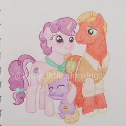 Size: 1050x1050 | Tagged: safe, artist:mmy_little_drawings, big macintosh, little mac, sugar belle, pony, unicorn, clothes, colt, eyelashes, eyes closed, father and child, father and son, female, freckles, horn, hug, male, mare, mother and child, mother and son, raised hoof, shipping, smiling, stallion, straight, sugarmac, traditional art, unshorn fetlocks, watermark