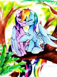 Size: 2086x2782   Tagged: safe, artist:liaaqila, rainbow dash, twilight sparkle, alicorn, pegasus, pony, behaving like a bird, eyes closed, female, hug, lesbian, liaaqila is trying to murder us, liaaqila is trying to murder us with dashabetes, shipping, traditional art, tree, tree branch, twidash, twilight sparkle (alicorn), watercolor painting, winghug, wings