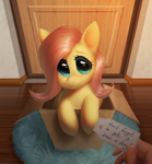 Size: 2408x2602 | Tagged: safe, artist:klooda, fluttershy, pegasus, pony, box, cute, daaaaaaaaaaaw, detailed, detailed background, door, female, floor, folded wings, hand, high res, holding, hooves together, indoors, looking at you, looking up, mailbox, morning, note, offscreen character, open mouth, package, pony in a box, pov, realistic, room, rug, shyabetes, sitting, solo, text, weapons-grade cute, wings
