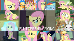 Size: 1280x721 | Tagged: safe, edit, edited screencap, editor:quoterific, screencap, angel bunny, applejack, fluttershy, rainbow dash, rarity, tank, earth pony, pegasus, pony, rabbit, tortoise, unicorn, a bird in the hoof, castle mane-ia, filli vanilli, hurricane fluttershy, it ain't easy being breezies, magical mystery cure, ponyville confidential, putting your hoof down, tanks for the memories, the beginning of the end, the mean 6, the saddle row review, twilight's kingdom, angel is not amused, angry, animal, crying, eyes closed, female, fluttershy's cottage, lip bite, male, mare, offscreen character, open mouth, puddle, sad, stallion, tears of joy