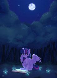 Size: 1740x2379   Tagged: safe, artist:shini951, twilight sparkle, alicorn, pony, book, dark, ear fluff, forest, full moon, moon, neck fluff, night, reading, sitting, sky, solo, stars, twilight sparkle (alicorn)