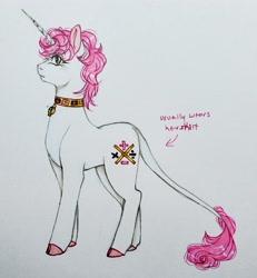 Size: 2851x3083 | Tagged: safe, artist:theartoffallensakura, pony, unicorn, collar, jewelry, jojo's bizarre adventure, necklace, ponified, solo, trish una