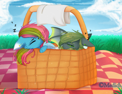 Size: 2789x2150 | Tagged: safe, artist:mediasmile666, oc, oc only, oc:media smile, bat pony, pegasus, pony, basket, bat pony oc, cloud, duo, female, floppy ears, grass, mare, onomatopoeia, outdoors, picnic basket, picnic blanket, sky, sleeping, sound effects, zzz