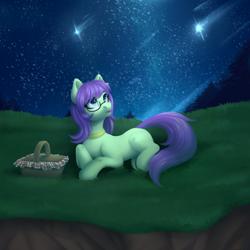 Size: 1500x1500 | Tagged: safe, artist:nika-rain, oc, oc only, earth pony, pony, cute, female, glasses, night, solo, stars