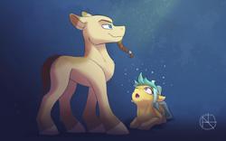 Size: 4000x2500   Tagged: safe, artist:klarapl, oc, oc:karoline skies, oc:raido, earth pony, pony, duo, earth pony oc
