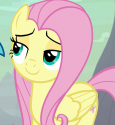 Size: 659x717   Tagged: safe, screencap, fluttershy, princess ember, pegasus, pony, sweet and smoky, cropped, lidded eyes, offscreen character, smiling, solo focus