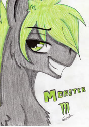 Size: 2458x3509 | Tagged: safe, artist:beamybutt, oc, oc only, pegasus, pony, bust, chest fluff, grin, high res, male, pegasus oc, signature, simple background, smiling, solo, stallion, traditional art, white background