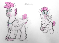 Size: 1280x925 | Tagged: safe, artist:verikoira, oc, oc only, oc:mussel, hippogriff, hybrid, interspecies offspring, magical lesbian spawn, male, offspring, parent:pinkie pie, parent:princess skystar, parents:skypie, solo, traditional art