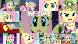 Size: 1280x721 | Tagged: safe, edit, edited screencap, editor:quoterific, screencap, basil, discord, fluttershy, bee, draconequus, dragon, flash bee, insect, pegasus, pony, a health of information, bats!, best gift ever, dragonshy, dungeons and discords, flutter brutter, keep calm and flutter on, make new friends but keep discord, princess twilight sparkle (episode), putting your hoof down, season 1, season 2, season 3, season 5, stare master, sweet and smoky, the cutie re-mark, alternate timeline, badass, chrysalis resistance timeline, clothes, collage, dress, eyebrows, flutterbadass, gala dress, stare, the stare, tribalshy