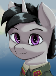 Size: 1280x1724 | Tagged: safe, artist:monx94, oc, oc only, oc:lucky roll, pony, unicorn, equestria at war mod, bust, clothes, commission, head, horn, looking at you, military, military uniform, portrait, smiling, smiling at you, solo, unicorn oc, uniform
