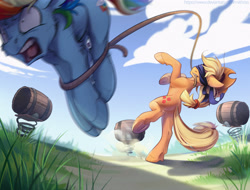 Size: 4400x3340 | Tagged: safe, artist:mithriss, applejack, rainbow dash, earth pony, pegasus, pony, barrel, bipedal, blindfold, bound, duo, lasso, mouth hold, open mouth, rope, screaming, silly, silly pony, target practice, this will end in pain, underhoof, who's a silly pony