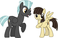 Size: 10702x7000 | Tagged: safe, artist:chainchomp2, thunderlane, wild fire, pegasus, pony, absurd resolution, duo, female, male, mare, raised hoof, simple background, stallion, transparent background, vector