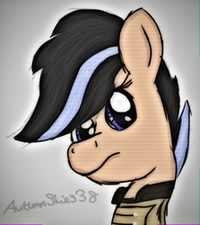 Size: 490x550 | Tagged: safe, artist:pegasski, oc, oc only, earth pony, pony, fallout equestria, bust, clothes, earth pony oc, eyelashes, female, mare, solo