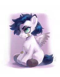 Size: 1449x1869 | Tagged: safe, artist:lunnita_pony, oc, oc only, oc:lunnita, pegasus, pony, foal, solo