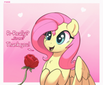 Size: 2368x1940 | Tagged: safe, artist:nookprint, edit, fluttershy, pegasus, pony, cropped, cute, flower, offscreen character, rose, shyabetes, solo
