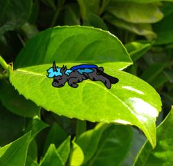 Size: 720x692 | Tagged: safe, artist:un simple tio, oc, oc:loshad, changeling, hybrid, blue changeling, blue hair, blue mane, horn, leaf, lying down, photo, scarred, sleeping, solo